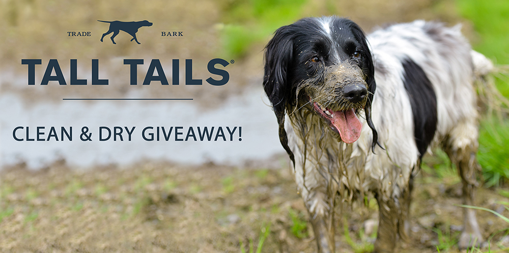 Enter to Win a Clean & Dry Prize Pack!